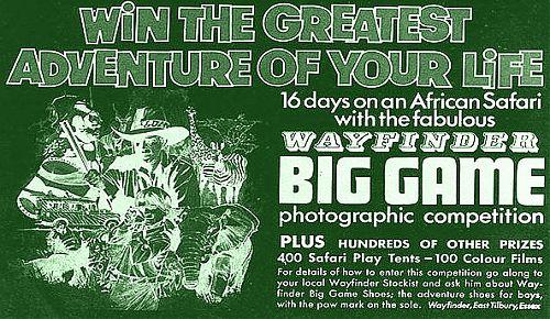 Wayfinder African Safari_Neg-green.jpg